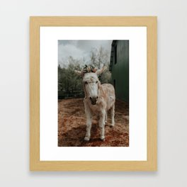 Baby in Bloom II Framed Art Print