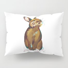 Bunny in shoes Pillow Sham