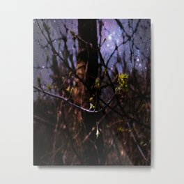Sprouting Growth Metal Print