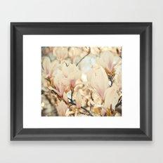 Magnolia and Cream Framed Art Print