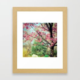 Nothing better then a colorful day!! Framed Art Print