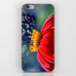 The Dance of the Pollen iPhone Skin