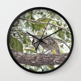 Looking for bugs Wall Clock