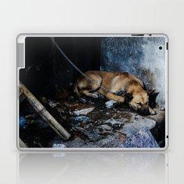 Chained Dog in Hanoi Laptop & iPad Skin