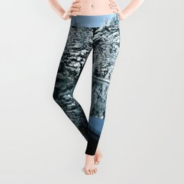 Winter Tranquility Leggings