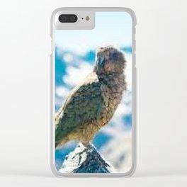 New Zealand Kea Clear iPhone Case