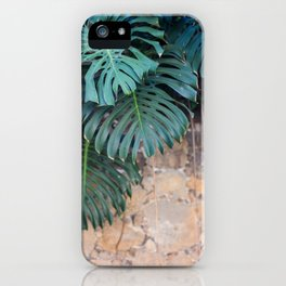 Monstera Print, Tropical Green Beauty iPhone Case