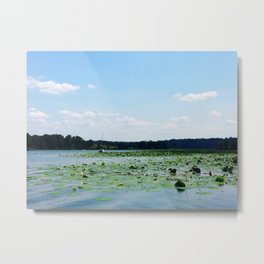 Lilly of the River...not the valley Metal Print