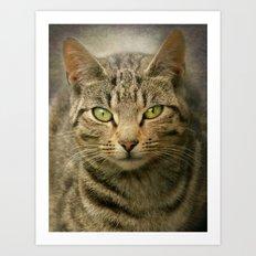 The Irish Cat Art Print