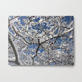 Crabapple Tree Metal Print
