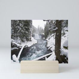 The Wild McKenzie River Waterfall - Nature Photography Mini Art Print