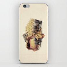 Elephant's Paradise iPhone Skin