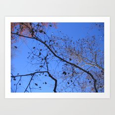 AutumnTreeExplosion II Art Print