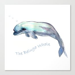 The Beluga Whale Canvas Print