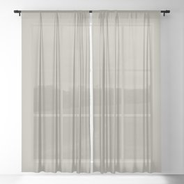 Pratt and Lambert 2019 Ever Classic Gray 32-24 Solid Color Sheer Curtain