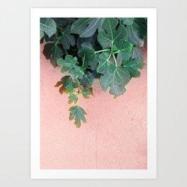 Pink Green Leaves Art Print