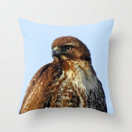 Young Prince of the Skies Throw Pillow