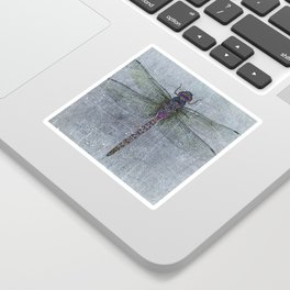 Dragonfly on blue stone and metal background Sticker
