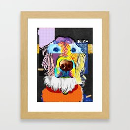 English Golden Retriever Framed Art Print