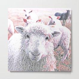 Animal ArtStudio 1819 Sheep Metal Print