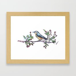 Bird on a Branch (drawn with one, continuous line) Framed Art Print