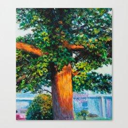 Sunset Maple Canvas Print