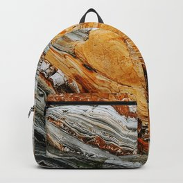 Gray Copper Marbled Petrified Wood Backpack