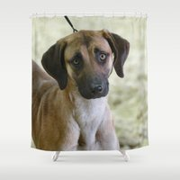 the hound Shower Curtains featuring Hound Pup by IowaShots