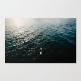 Sole Surfing Canvas Print