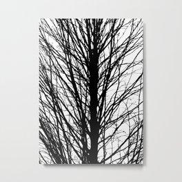Branches 5 Metal Print