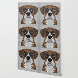 Boxer Wallpaper