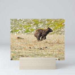 Bear on the Run Mini Art Print