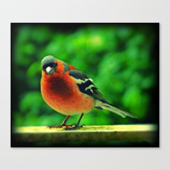 - Angry Bird -  Canvas Print