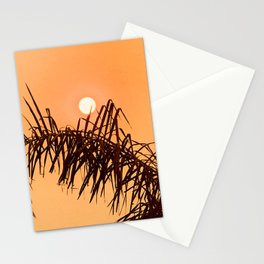 Tangerine Tropical Sunrise Over Palm Leaves Stationery Cards