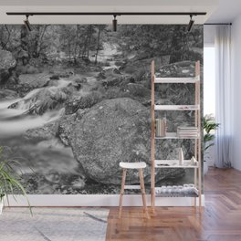 The mountain river and the big rock Wall Mural