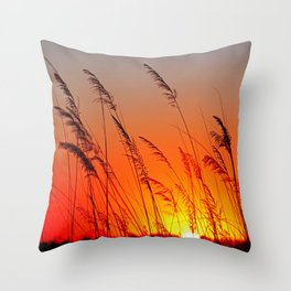 When the day starts Throw Pillow