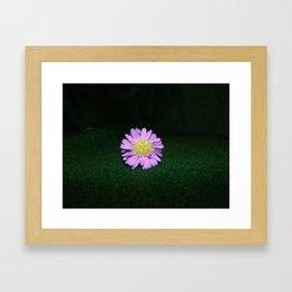 Small Flower #1 Framed Art Print
