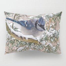 Snow Jay Pillow Sham