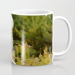 How Dare You Coffee Mug