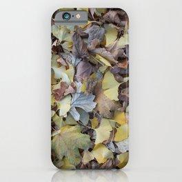 ginkgo potpourri iPhone Case
