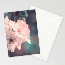 Delicate Strength (Spring White Cherry Blossom) Stationery Cards