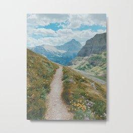 Glacier National Park-3 Metal Print