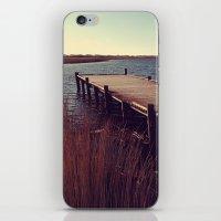 denmark iPhone & iPod Skins featuring Denmark by Elisabeth Mochner