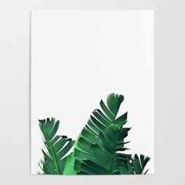 Tropical vibes #6 Poster