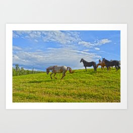 A Fine Case of the Happies Art Print
