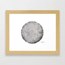 My little planet Framed Art Print