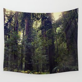Sunrays in the Redwoods Wall Tapestry