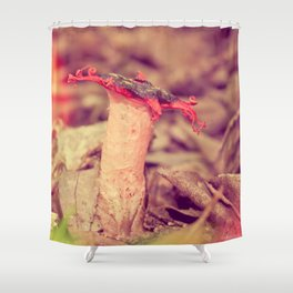 Poetry on the forest floor - landscape and macro photography Shower Curtain