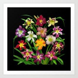 Display of daylilies II on blck Art Print