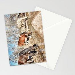 Apache Creek Ponies Stationery Cards